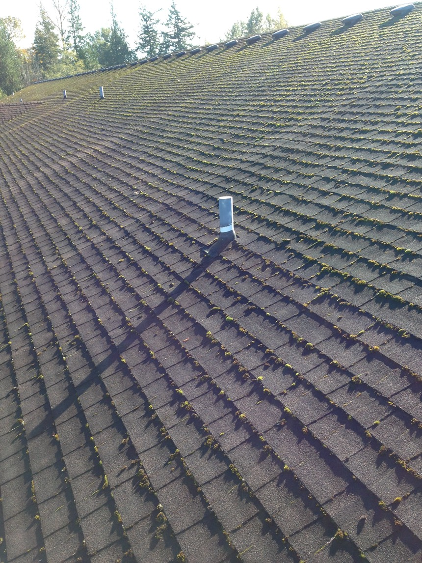 Asphalt Roof Cleaning Peak Of Perfection Roof Cleaning